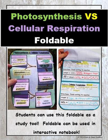 Photosynthesis VS Cellular Respiration Foldable