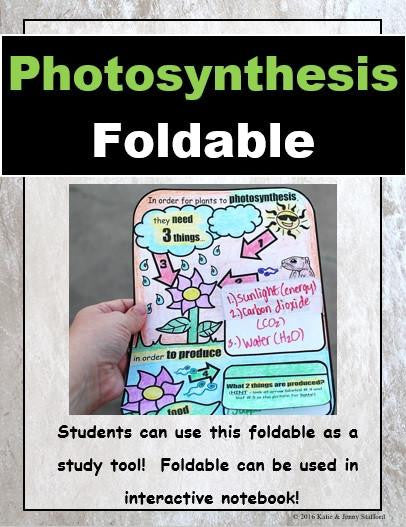 Photosynthesis Foldable (Simple)