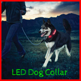 BriteDoggie Nighttime Safety LED Dog Collar