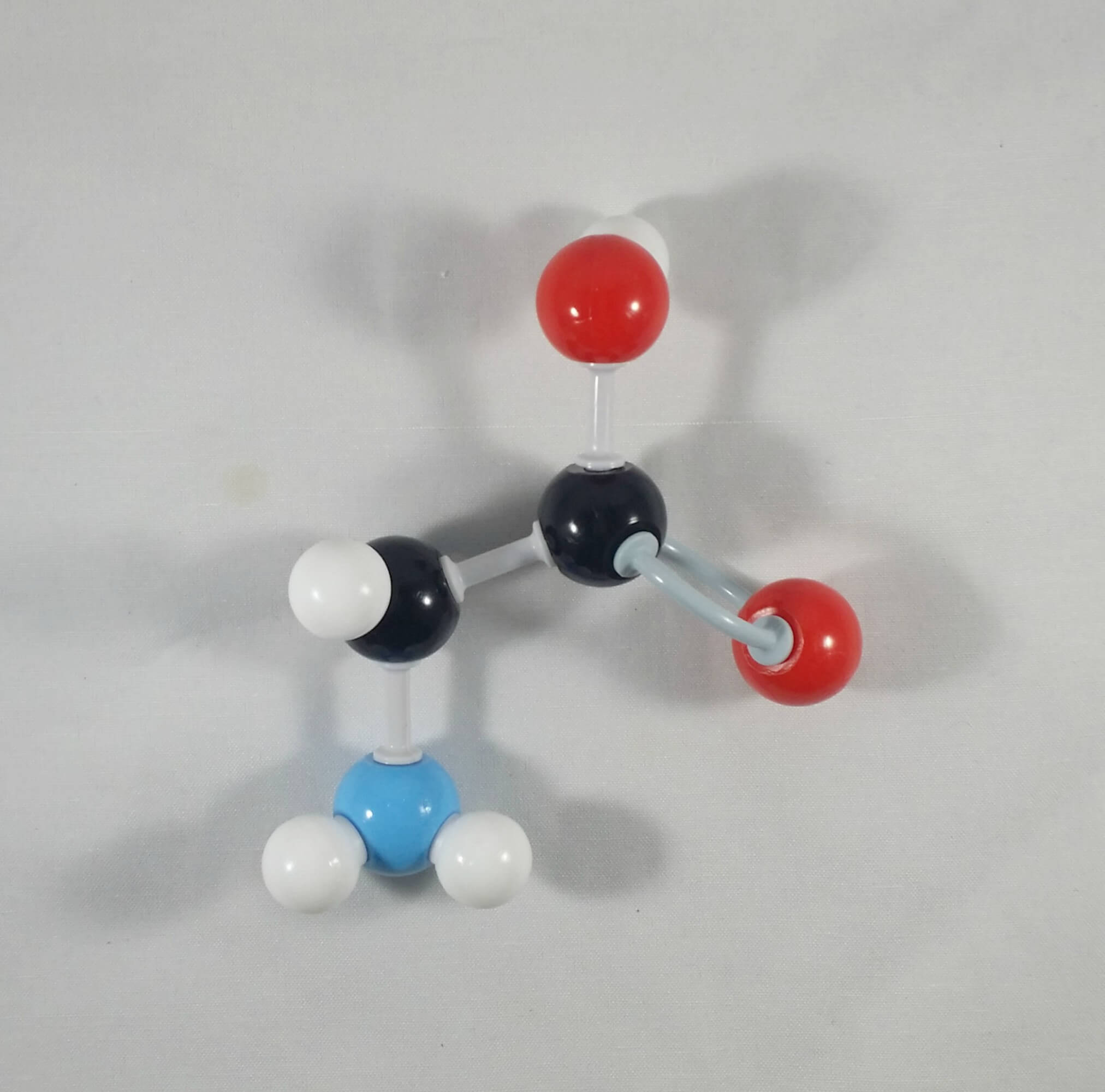 Glutamic Acid Molecule