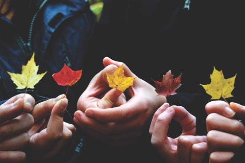 Four pairs of hands holding fall leaves.