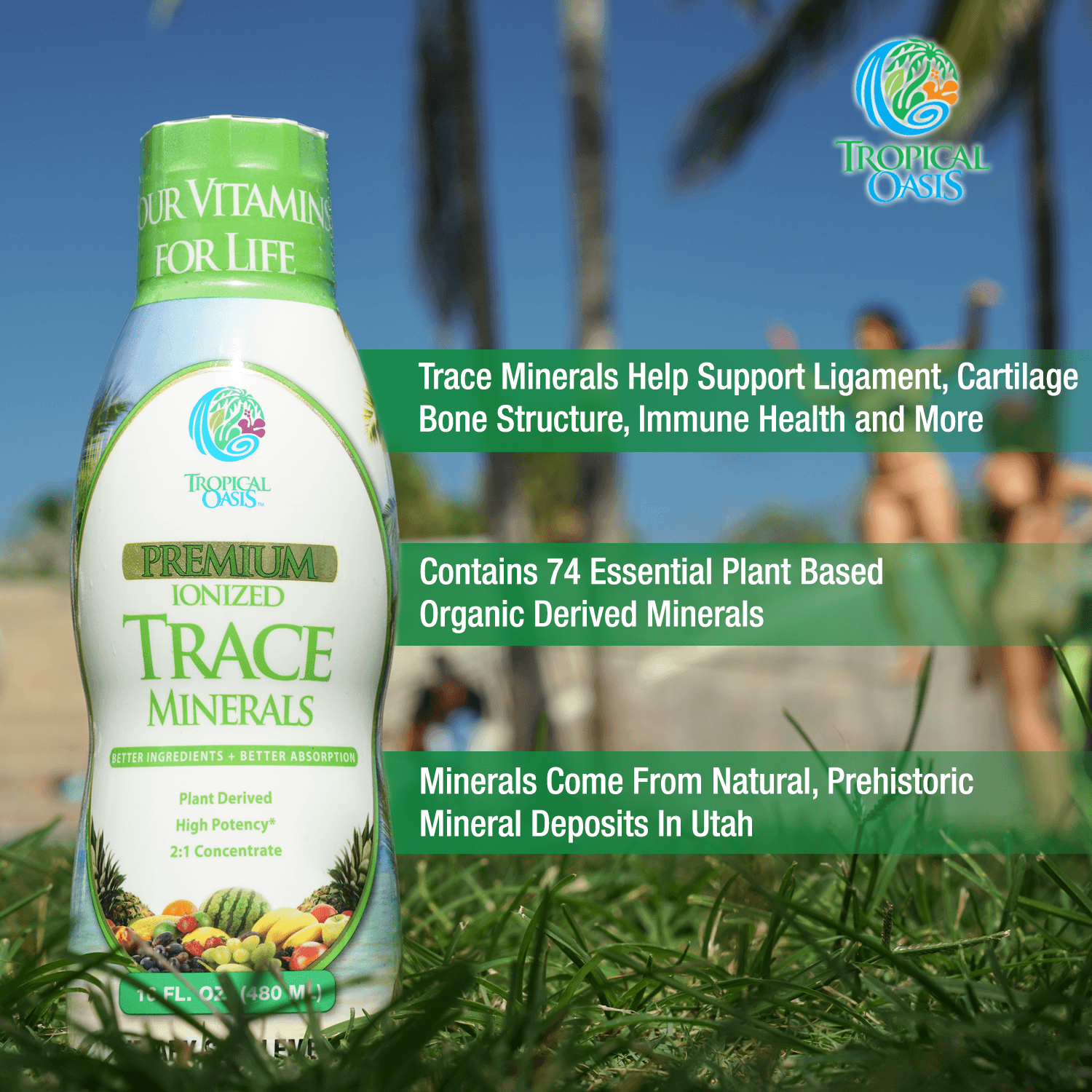 Premium Plant Based Trace Minerals - 74 Natural Organic Ionized Trace Minerals - tropical-oasis-store