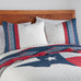 Texas Flag Quilt Set