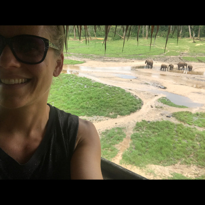 Part 3- Elephants and Water