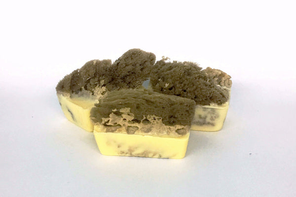 Pineapple Papaya Sponge Soap