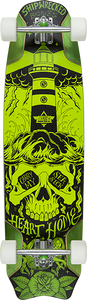 DUSTERS SKATEBOARDS BONES LB COMPLETE-9.5x37.9 GREEN