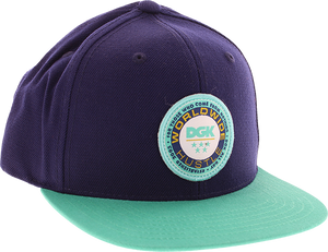 DGK WORLDWIDE HAT ADJ-NAVY/GRN