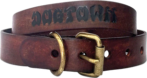 DOGTOWN DOG COLLAR MEDIUM-BROWN