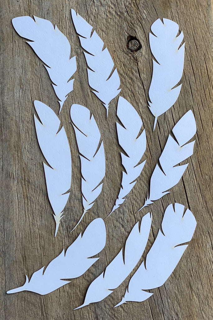 10 pack card stock feathers