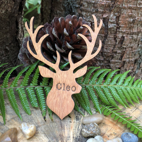 Wooden Stags Head Place Name