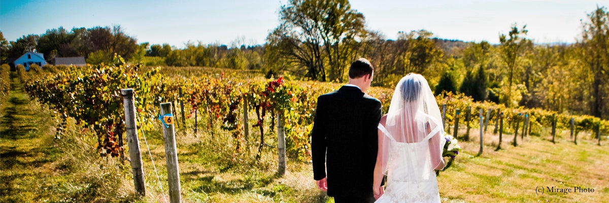 Mount Pleasant Estates Wedding at Vinyard
