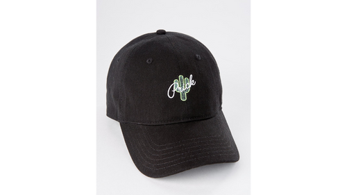 Cactus Prick Dad Hat