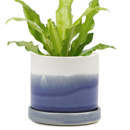 Ceramic Pot with Drainage - Blue
