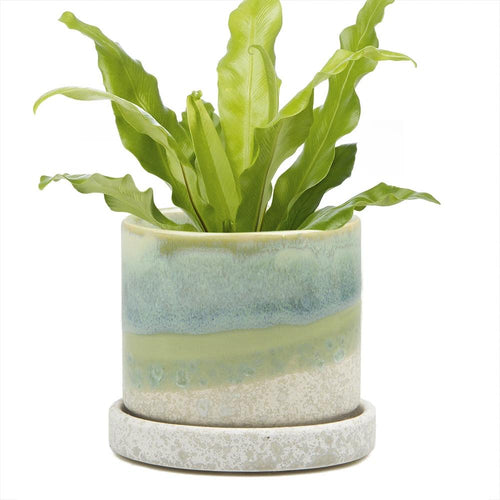 Ceramic Pot with Drainage - Green