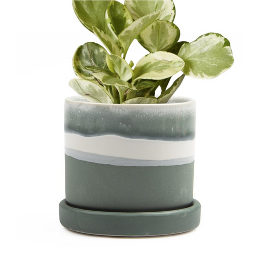 Ceramic Pot with Drainage - Matte Green