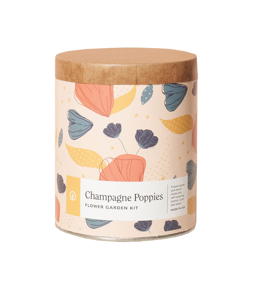 Champagne Poppies Waxed Planter