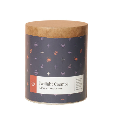 Twilight Cosmos Waxed Planter