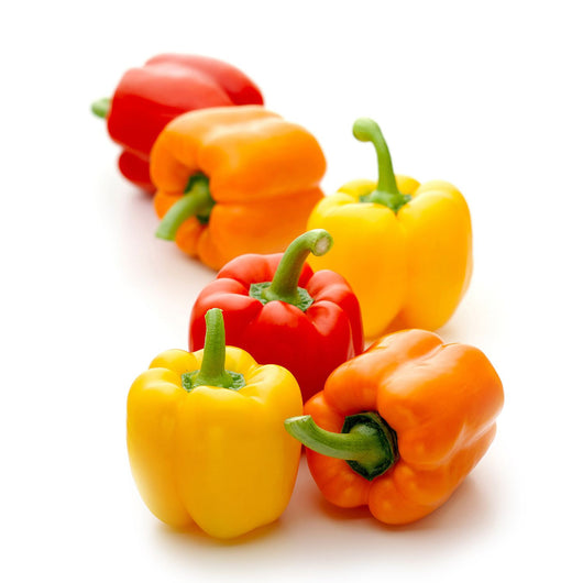 Multi Bell Sweet Peppers (6 ct.)