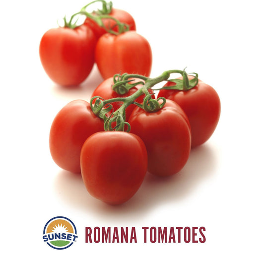 Roma Tomatoes Greenhouse (2 lbs.)