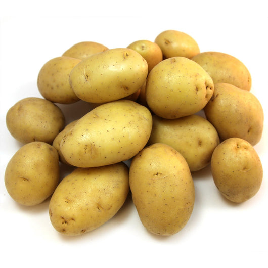 Butter Golden Yellow Potato (10 lb. bag)