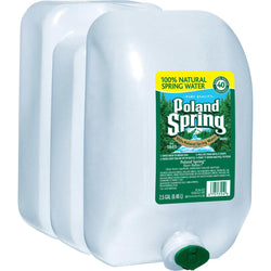 Poland Spring 100% Natural Spring Water (2.5 gal., 2 pk.)