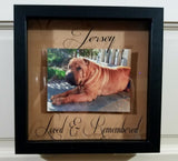 Custom Pet Memorial Framed Shadow Box - We use your picture, choice of words, colors & frame choice!