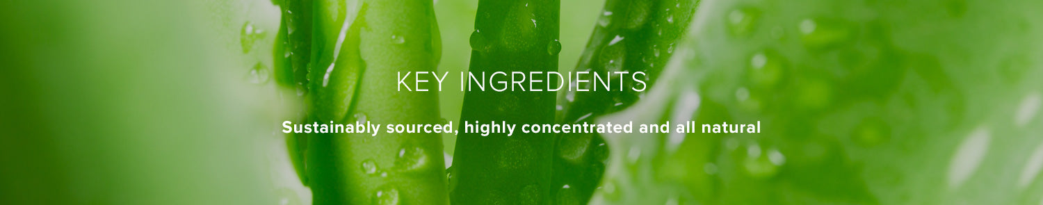 Key Ingredients: Sustainably sourced, highly concentrated and all natural