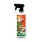 Holiday Detail Spray 16oz - XS Detailing Products