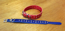 Load image into Gallery viewer, Studded Vegan Dog Collar_Vegan_Accessories_Vegan Wares