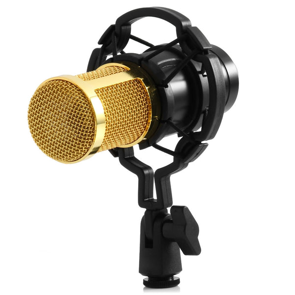 Mki Audio - Fashionable Condensers Microphone with Shock Mount