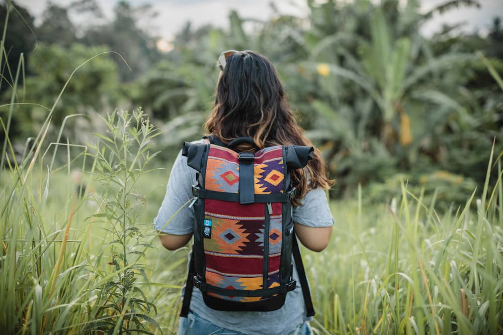 Raja Travel Backpack