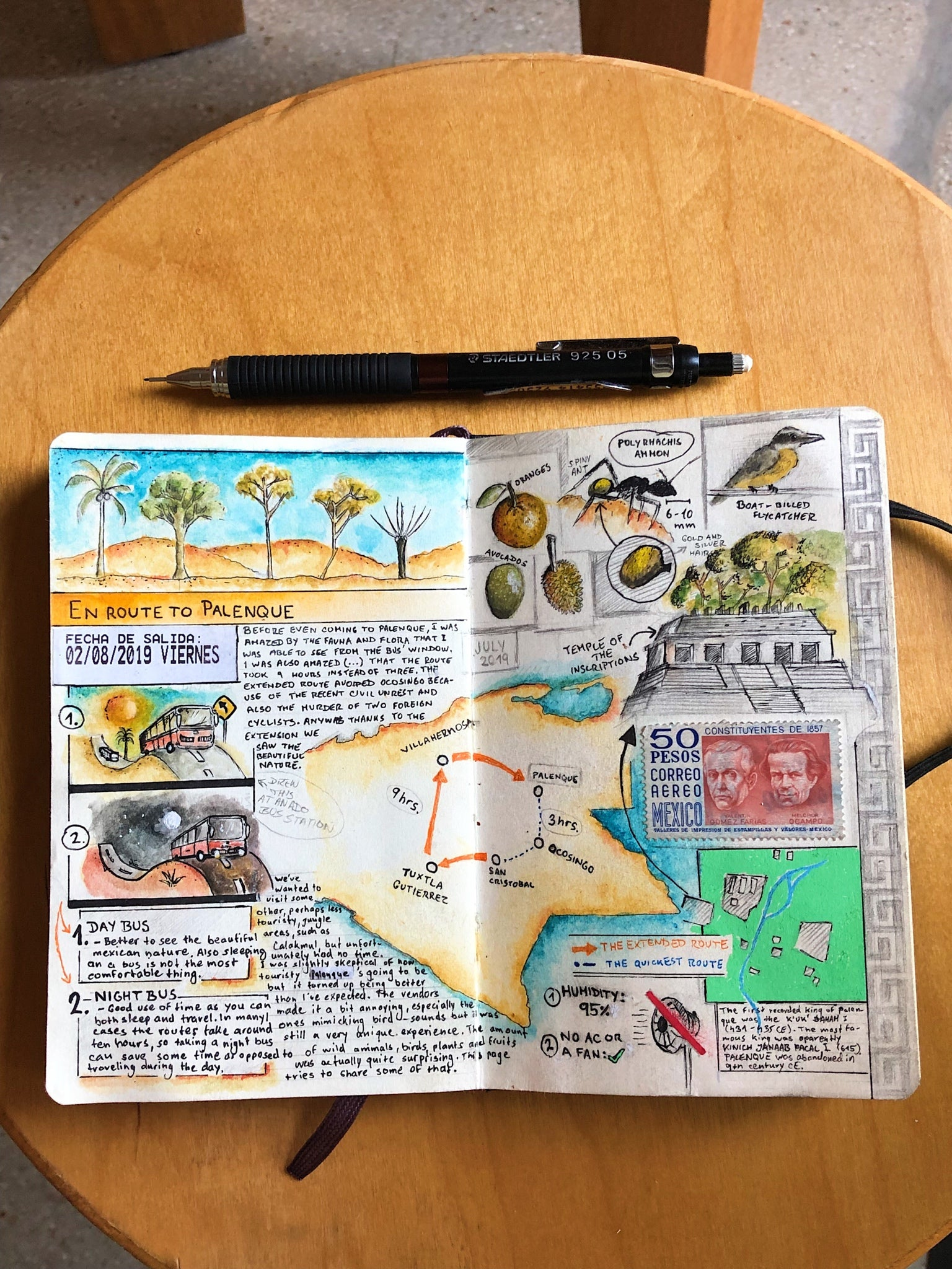Mexico travel journal by Adam Hacklander