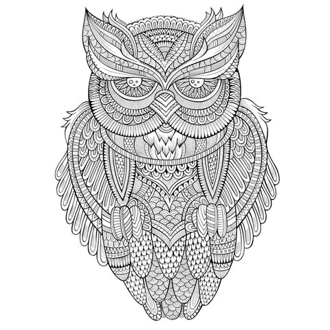 Image of Owl by Olga Kostenko