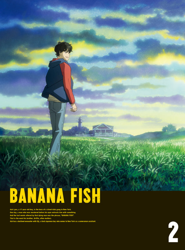 (DVD) BANANA FISH TV Series DVD Disc BOX 2 [Complete Production Run Limited Edition]