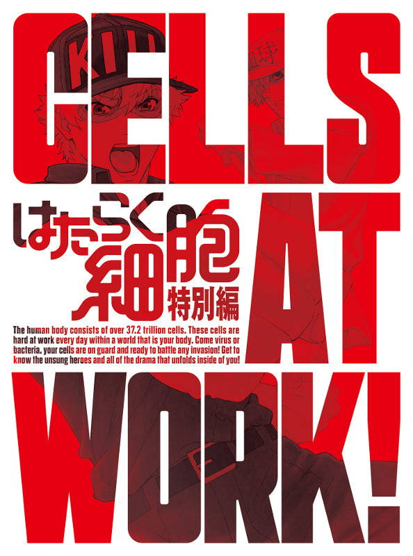 (DVD) Cells at Work! TV Series Special Episode [Complete Production Run Limited Edition]