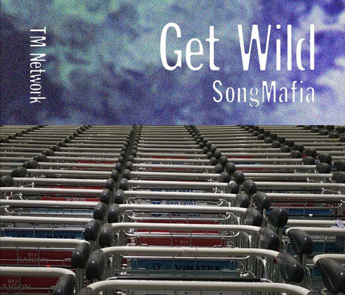 Image result for TM NETWORK - GET WILD SONG MAFIA