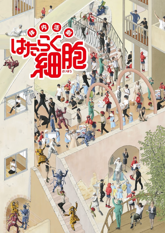 (Blu-ray) Internal Action Play Cells at Work (Tainai Katsugeki Hataraku Saibou) Stage Play [Regular Edition]