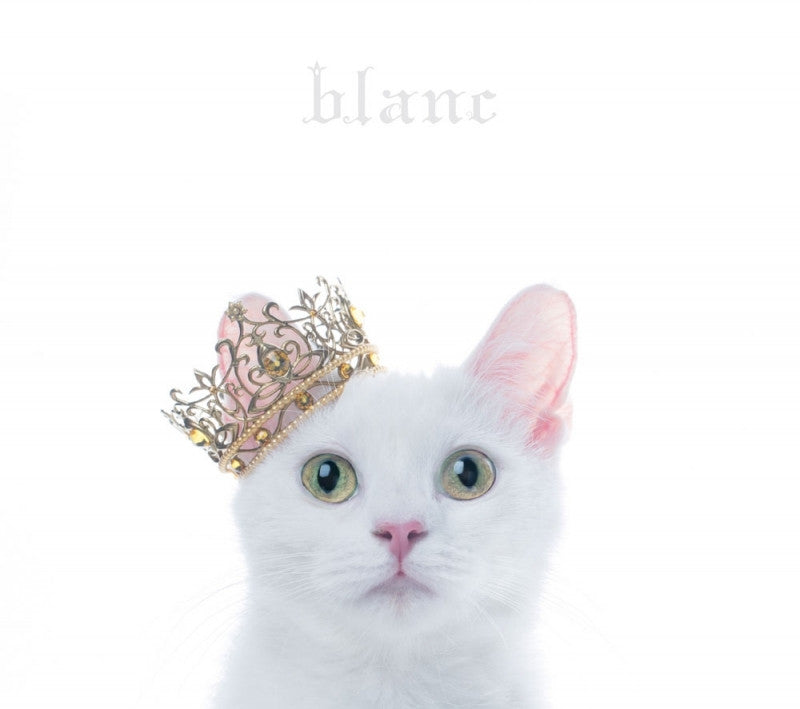 "(Album) BEST SELECTION ""blanc"" by Aimer [w/ DVD, Limited Edition / Type B]"