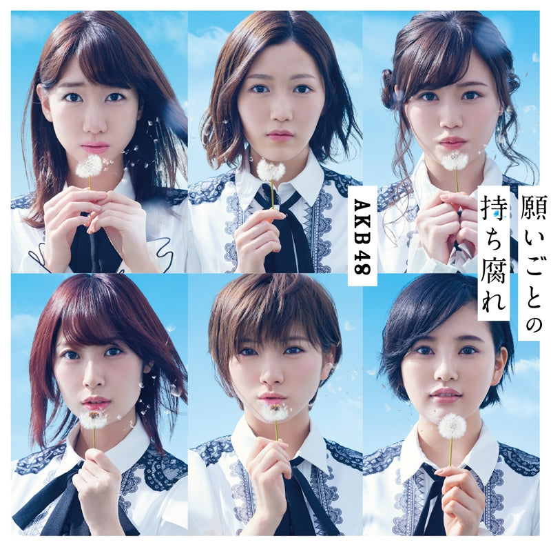 (Maxi Single) AKB48 / Negaigoto no Mochigusare [Type C] [Limited Edition] [CD+DVD]