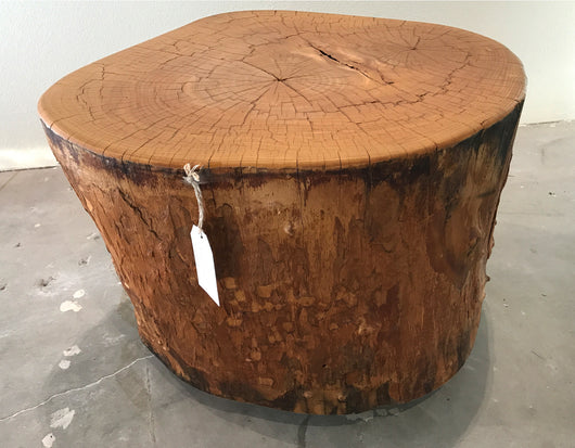 Indonesian Petrified Wood Side Table