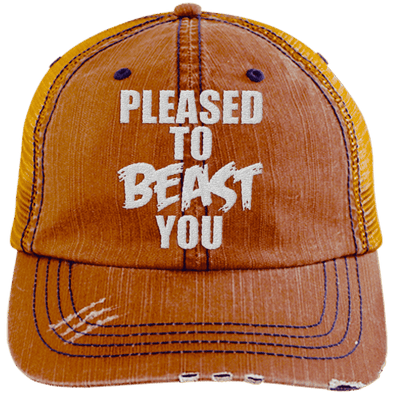 Pleased To Beast You Hats CustomCat Orange/Navy One Size