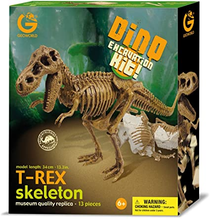 Dino Excavation Kit: T-Rex Skeleton
