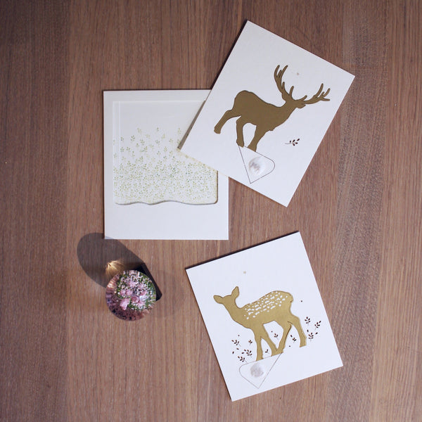 Envelope Seedcard, STAG