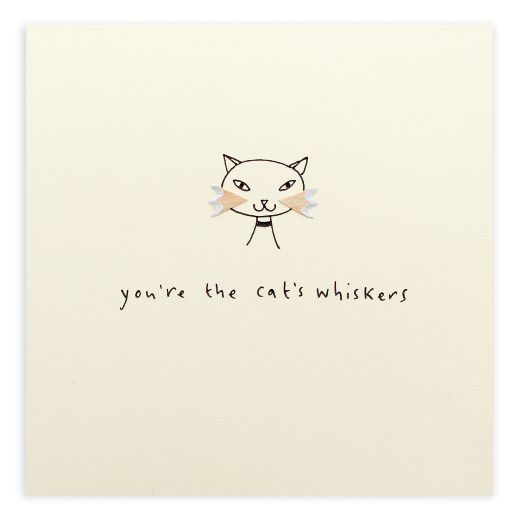 Pencil Shavings Card, Cat's Whiskers