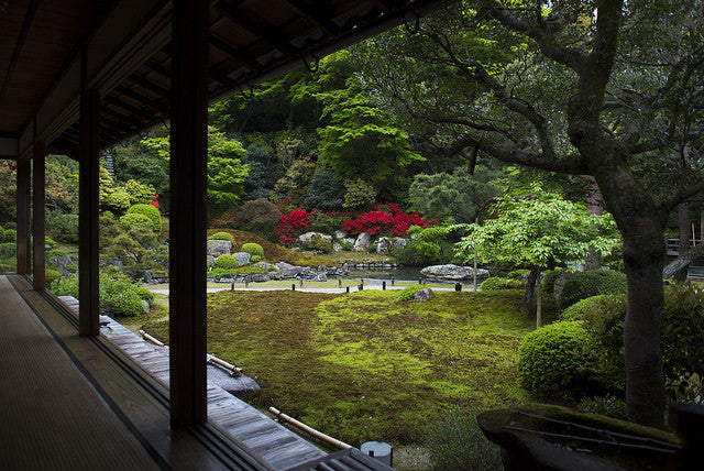 Beautiful Japan! Japanese garden and geisha - Shoren-in Temple and Gion walk - - 洛Concierge