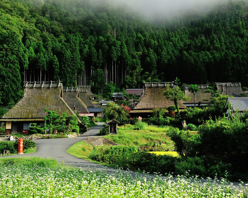 Miyama water spraying Event - 洛Concierge