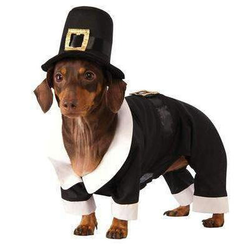 Pilgrim Boy Dog Costume Pet Clothes Rubie's Costumes