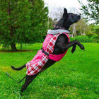 Alpine All Weather Dog Coat - Raspberry Plaid, Pet Clothes, Furbabeez, [tag]