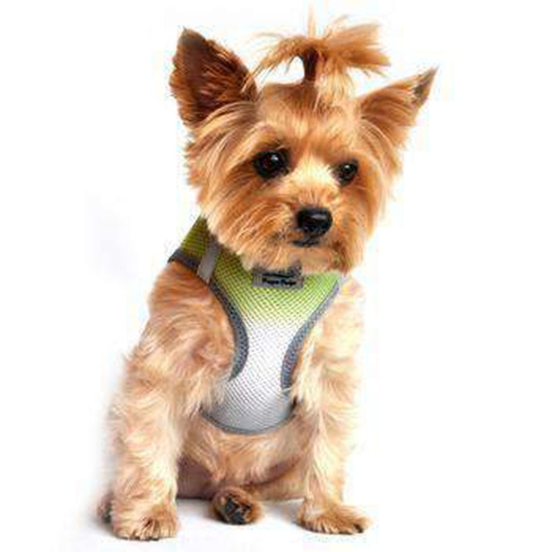 American River Choke-Free Dog Harness - Limestone Gray Ombre, Collars and Leads, Furbabeez, [tag]