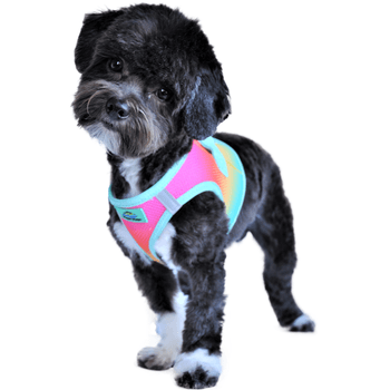 American River Choke Free Dog Harness Ombre Collection - Beach Party Collars and Leads Doggie Design